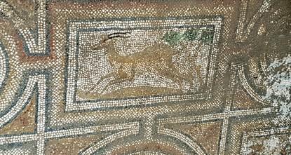 Древняя мозаика обнаружена на юге Турции