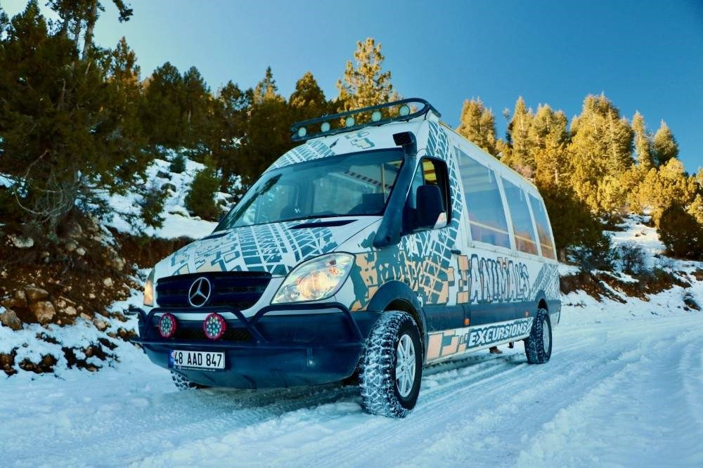 Animal's Excursions wants to offer expats a day in the snow and in the outdoors. (Courtesy of Animal's Excursions)