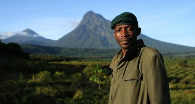 "Two months after the film ""Virunga"" premiered at 2014 Tribeca Film Festival, public outrage triggered the suspension of further exploration plans in the Virunga National Park, a UNESCO World Heritage site and refuge for endangered mountain gorillas."