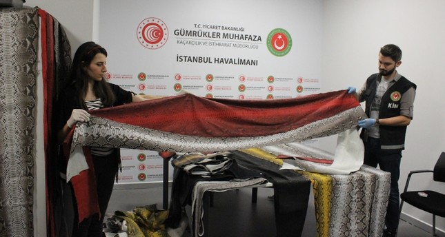 355 meters of snakeskin seized from passenger's luggage at Istanbul Airport