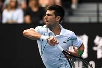 Djokovic urges Davis and ATP Cups to merge or die