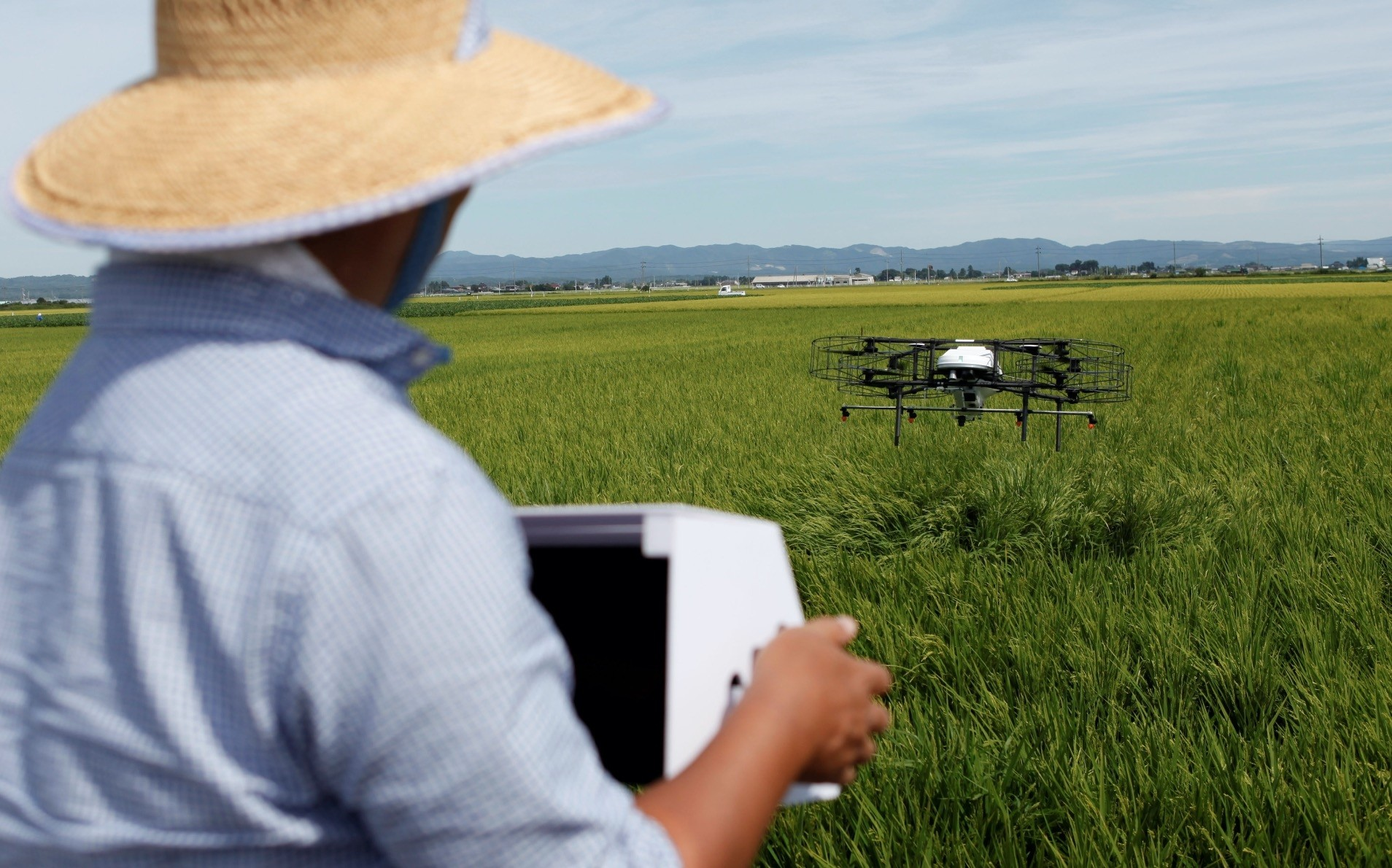 Nileworks Inc.u2019s automated drone flies over rice plants, spraying pesticide while diagnosing growth of individual rice stalks, during a demonstration in Tome, Miyagi prefecture, Aug. 20.