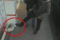 Man in western Turkey charged over kicking cat in viral video