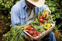 Protect yourself from hay fever naturally with fruits and vegetables