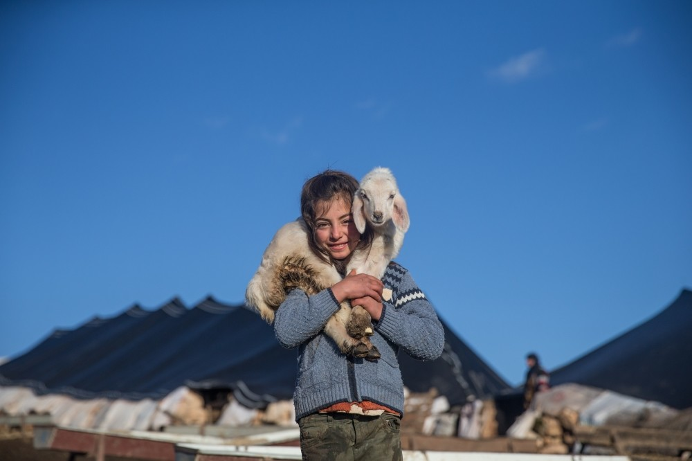A Yu00f6ru00fck girl poses with her baby lamb in u015eanlu0131urfa where her family spends winter.