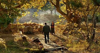 'Wild Pear Tree' chosen as Turkey's Oscar film entry