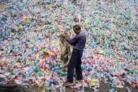 Umweltverschmutzung: Enzym gegen Plastikmüll entwickelt