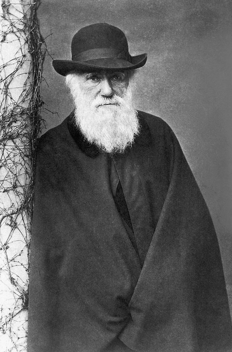 Charles Darwin, English naturalist who pretended that all species of life have descended over time from common ancestors. (File Photo)