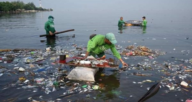 Workers collect thousands of dead fish among rubbish that washed ashore on Freedom Island, a protected area for migratory birds, in Manila Bay, Oct. 11. AFP