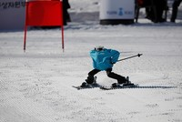SKorea hosts world's first ski robot tournament on sidelines of Winter Olympics