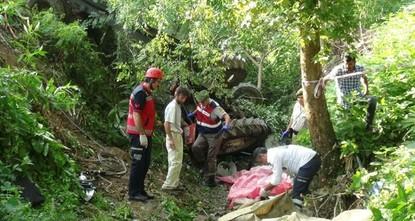 pIn der nordwestlichen Provinz Sakarya kippte am Freitagmorgen ein Traktor um. Sieben Landwirte kamen bei dem Unfall ums Leben, wobei zehn weitere verletzt wurden./p  pDer Traktor prallte in den...