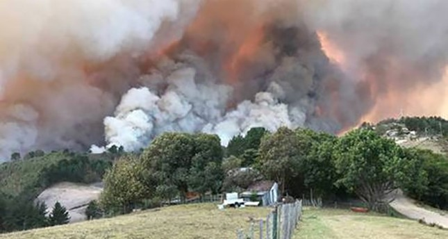 Fires burn at Buffelsvermaak farm near Knysna, South Africa June 7, 2017. (Reuters Photo)