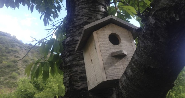 Bird lovers must build birdhouses which protect our feathered friends, architects say