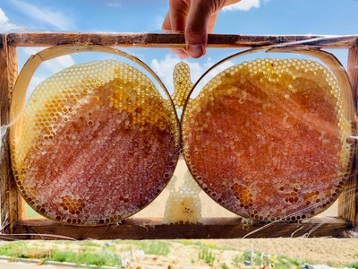 Turkey is the second largest honey producer in the world following China.