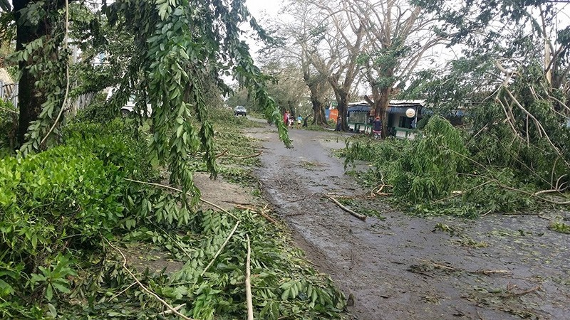Fallen trees are seen on the street in the aftermath of tropical cyclone Ava in Toamasina, Madagascar, January 5, 2018 in this picture obtained from social media. (Via Reuters)