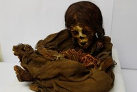 US university returns 500-year-old mummy of Incan girl to Bolivia