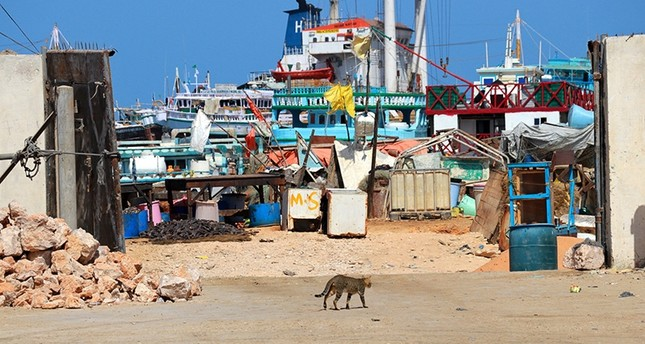 Ships are seen at the Bosaso port where head of Dubai government-owned P&O Ports' operations Paul Anthony Formosa was shot and killed, in Somalia's semi-autonomous region of Puntland, Somalia Feb. 4, 2019. (Reuters Photo)