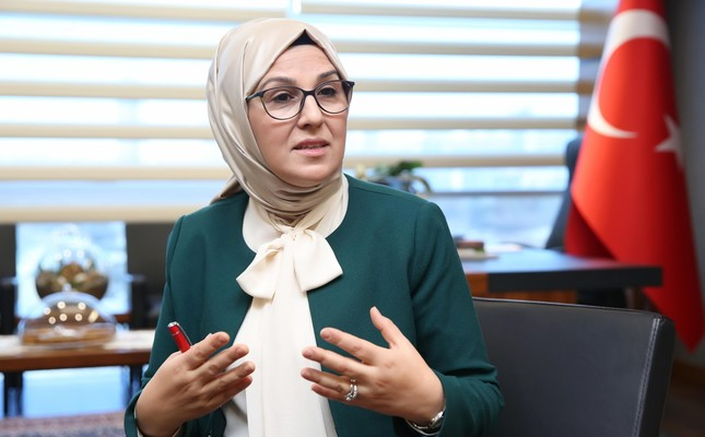 Domestic violence in Turkey declines, says parliamentary committee head