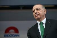 Эрдоган и президент Грузии обсудили TANAP