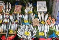 A beginner's guide to Turkey's fish season