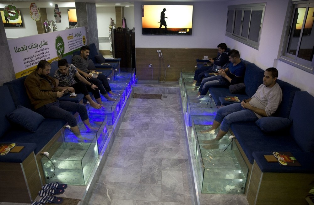 Palestinians soak their feet in tank stocked with fish at the cafe in Gaza City.