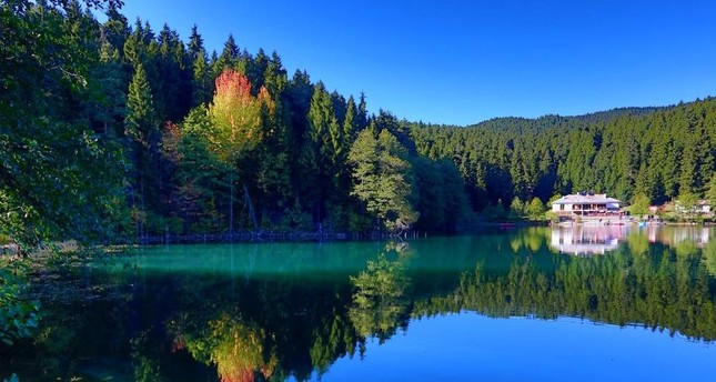 Bring autumn to your Instagram with photos from Artvin