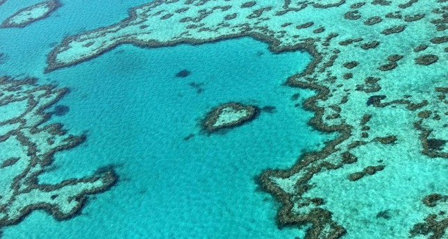 This file photo taken on November 20, 2014 shows an aerial view of the Great Barrier Reef off the coast of the Whitsunday Islands, along the central coast of Queensland AFP Photo