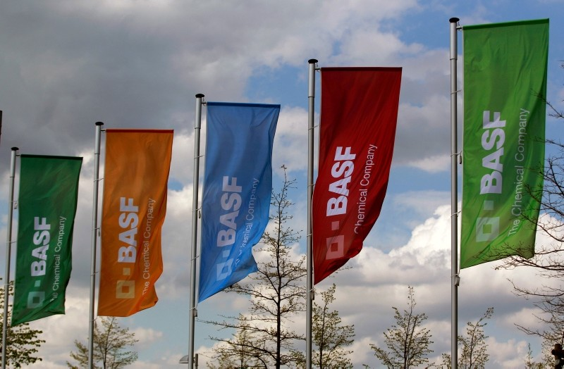Flags of the German chemical company BASF are pictured in Monheim, Germany April 20, 2012. (Reuters Photo)