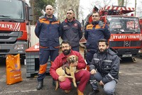 A puppy that made headlines in Turkey after it was saved from a 70-meter-deep borehole in Istanbul's Beykoz district now has a new home with the firefighters who led its 11 day-long rescue...