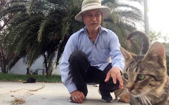Filipino man dedicates life to cats of Istanbul