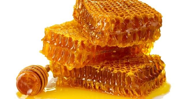 حوالي25مليون دولار.. قيمة صادرات العسل التركي خلال2019