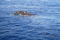 In der Flüchtlingskrise setzt sich Österreich mit Blick auf die Mittelmeer-Route für eine rigide Kontrolle der Zuwanderung ein. Neben der geschlossenen Balkanroute sei es nun entscheidend, auch die...