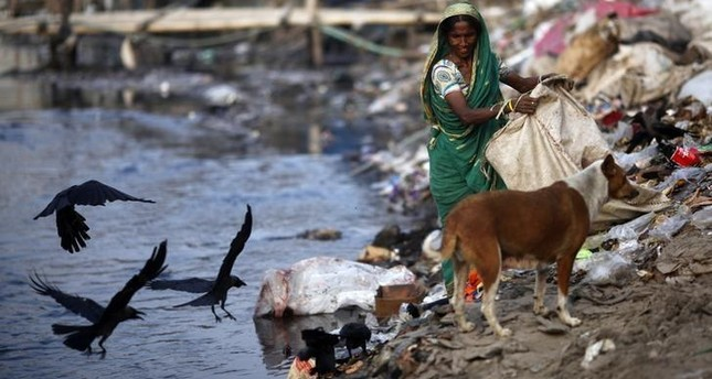 A woman collects garbages from a dump yard near a tannery at Hazaribagh along the polluted Buriganga river in Dhaka June 5, 2014. (Reuters Photo)