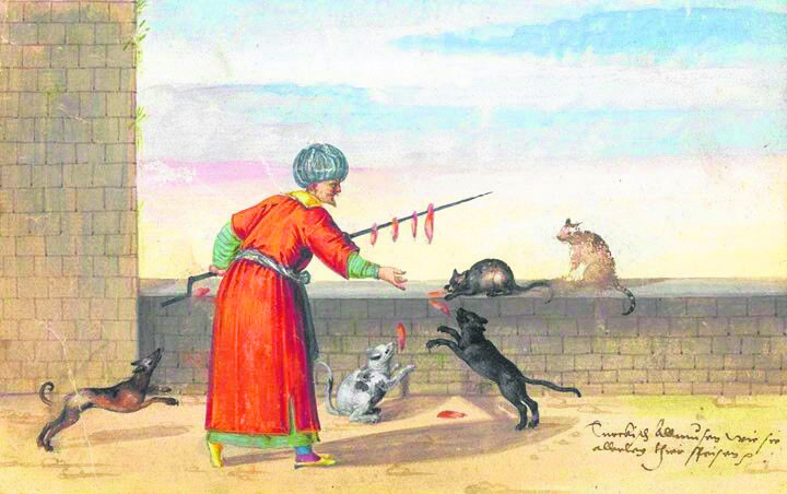 A painting depicting an Ottoman feeding street cats and dogs with meat.