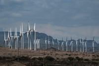 Kenya launches biggest wind farm in Africa