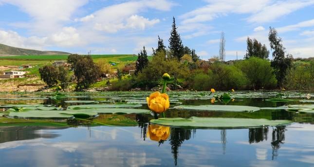 بحيرة غول باشي تدعو عشاق التصوير إلى استوديو الطبيعة الخلاب
