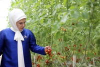 أمينة أردوغان تهنئ أمهات تركيا في عيدهنّ