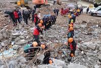 'Istanbul quake ordinary but be vigilant for big one'