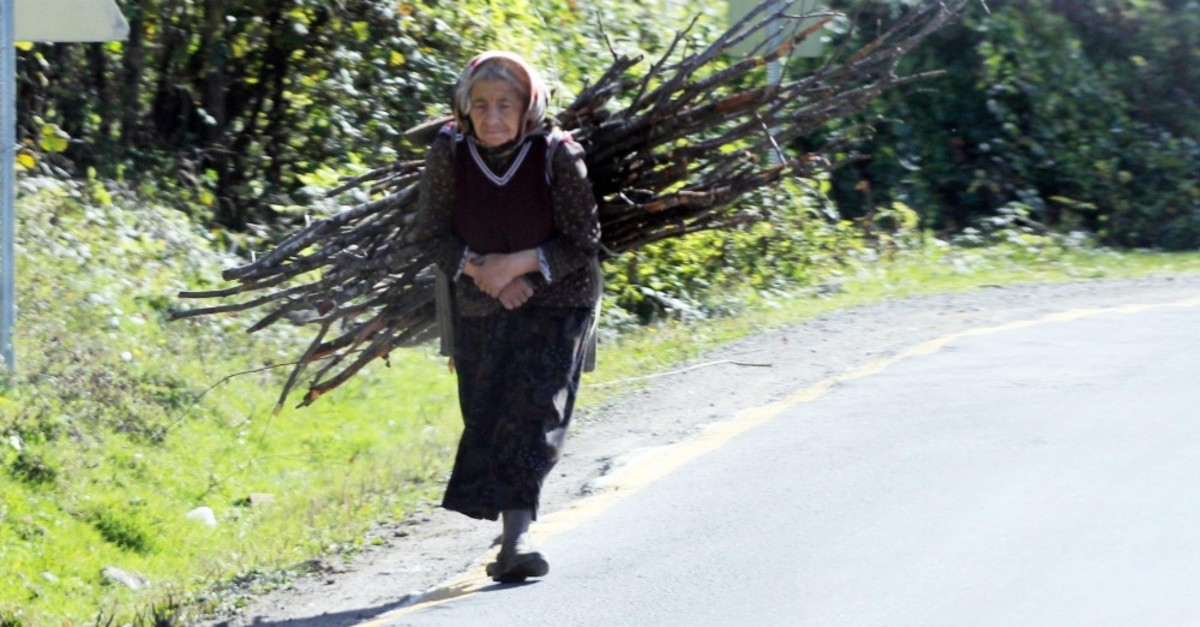 An old woman living in Gu00f6lku00f6y carries tree branches on her back.