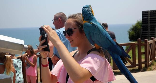 أعداد السياح الألمان إلى تركيا على موعد مع رقم قياسي في 2018