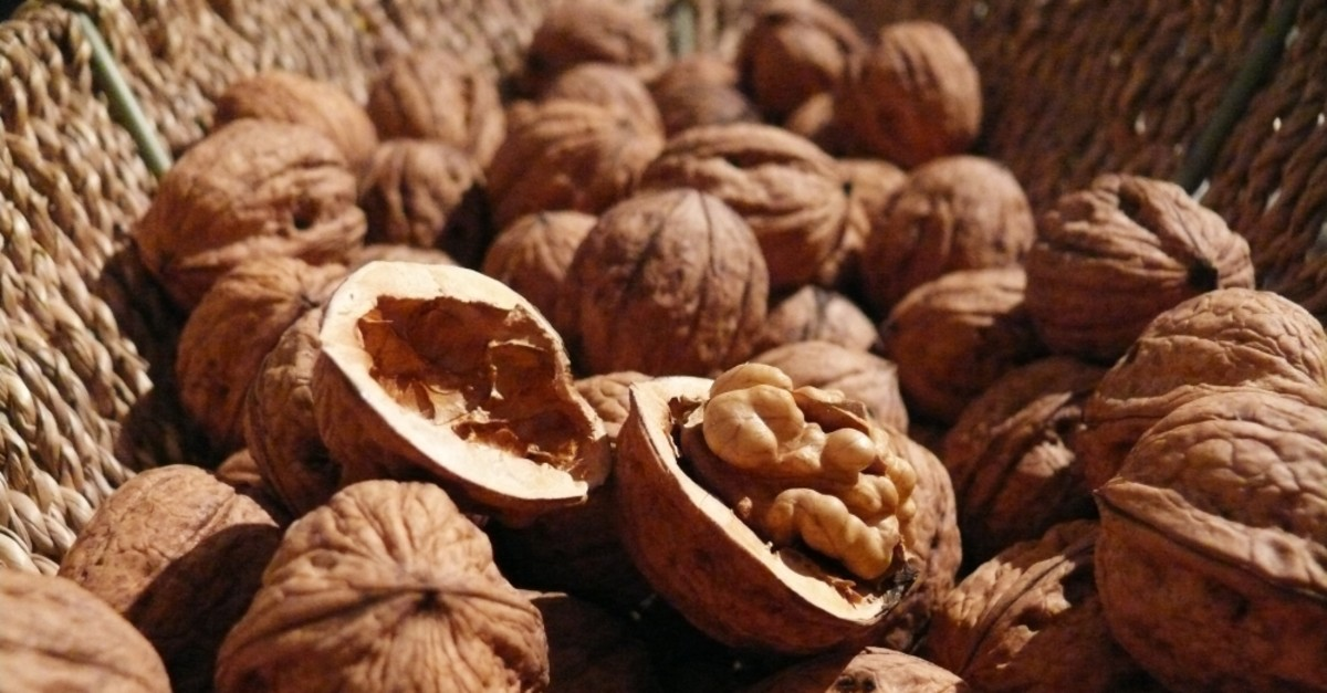 Dried fruits such as walnuts are good for improving your memory and brain health.