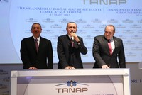 Erdoğan, Georgian counterpart discuss TANAP project in phone call