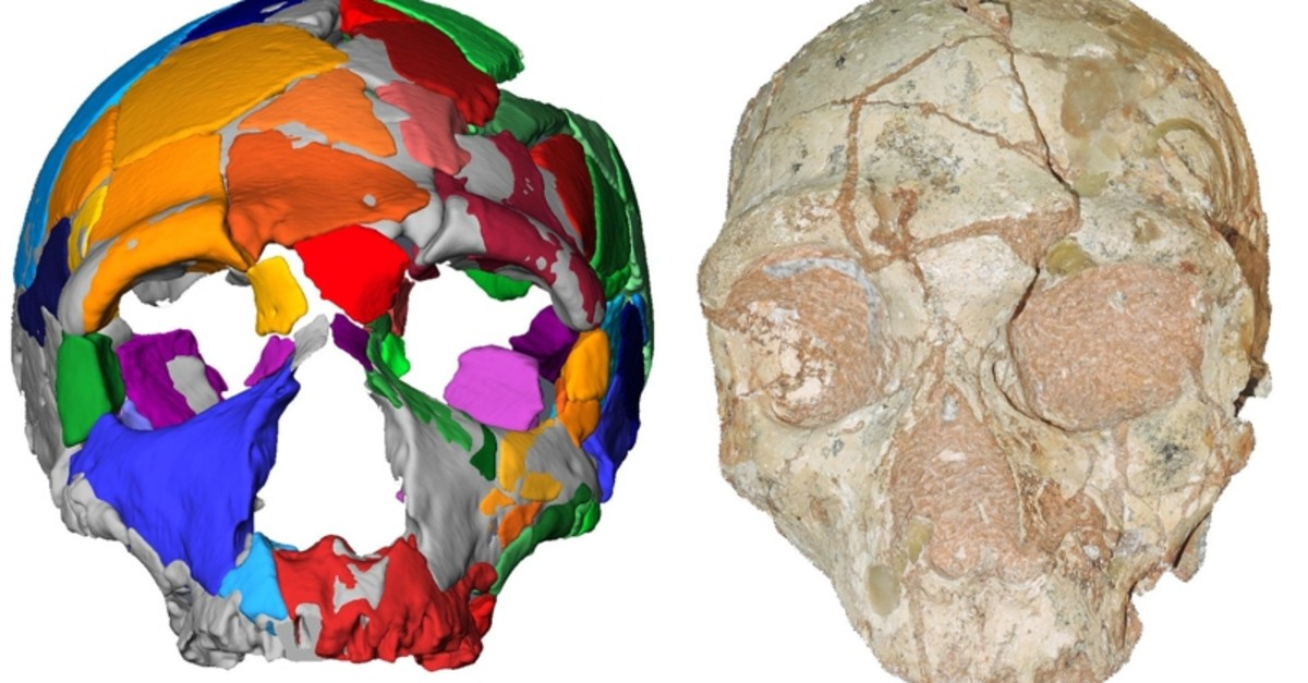 This handout picture released on July 10, 2019, by Eberhard Karls University of Tuebingen shows a reconstruction and computer model of part of a skull named Apidima 2, discovered in a Greek cave. (AFP Photo)