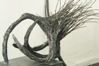 Birds' fight for survival inspires sculpture show