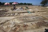 Rare fourth-century mosaic of chariot race found in Greek Cyprus