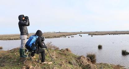 دلتا كيزيل إرماك التركية تستعد لاستقبال هواة تصوير الطيور