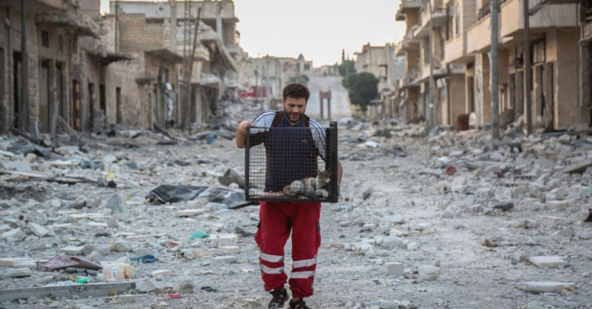 Mohammed Alaa Aljaleel carries one of the cats he rescued in a cage to take it to a safe house in Idlib, Syria.