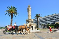 Izmir becomes the latest Turkish city to ban horse carriages