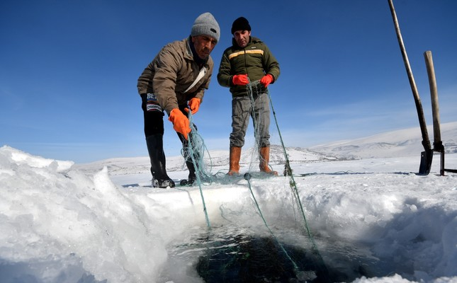 Breaking the ice with pickaxes and shovels, fishermen on Lake Çıldır give extra effort to fish.