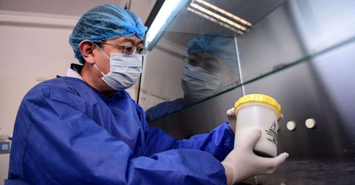 A laboratory technician works on testing samples from people to be tested for the COVID-19 coronavirus at a laboratory in Shenyang in China's northeastern Liaoning province on Feb. 12, 2020. (AFP)